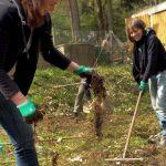 Die Bio-Kläranlage muss neu bepflanzt werden.